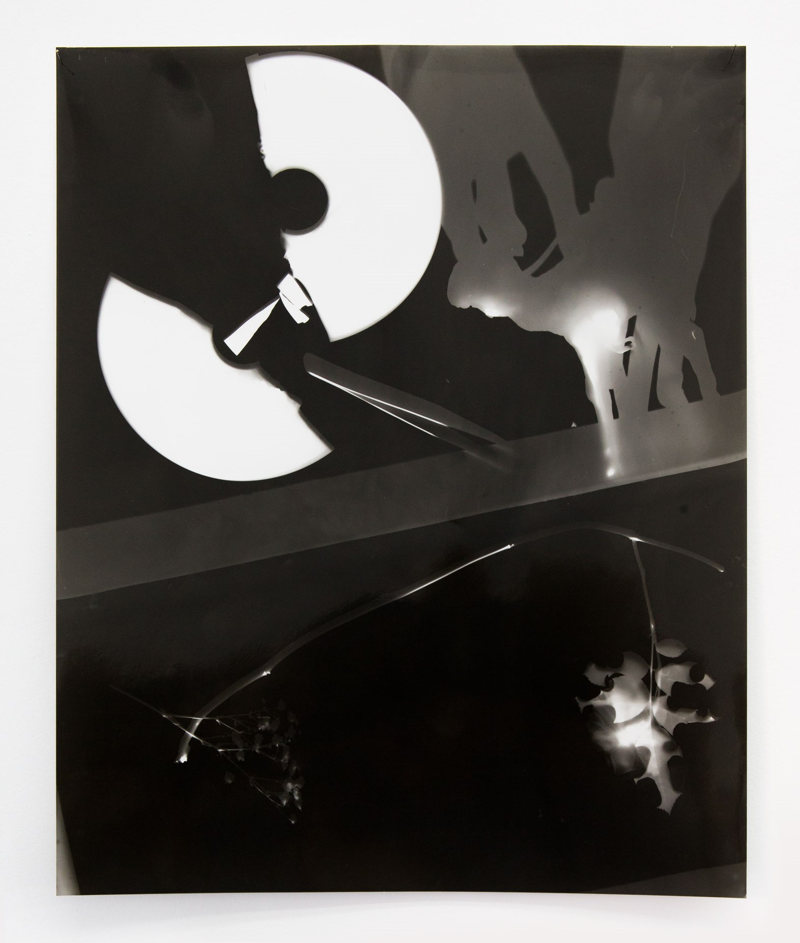 Photogram portraits of collective state of mind, 2018